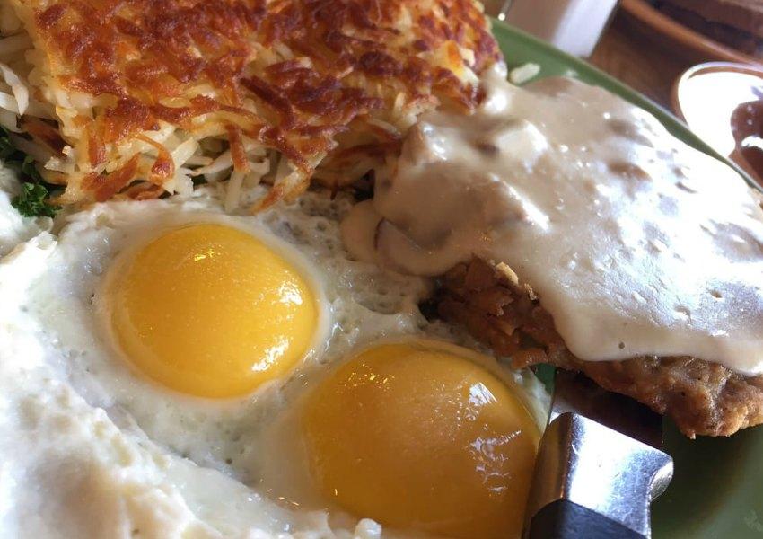 Eggs Gallery 2
